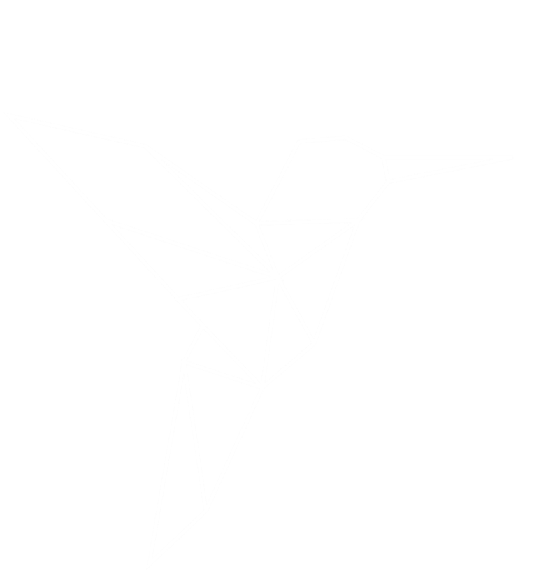 Dessin colibri en origami
